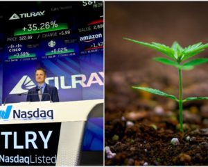 Smoked Out Cannabis Stock Tilray Could Get High on YOLO