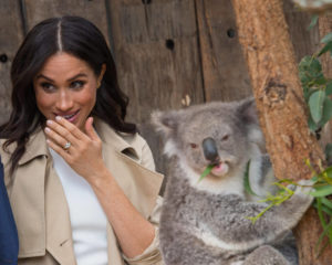 What Meghan Markle's Deluded Fans Refuse to Admit About Her Disney Gig