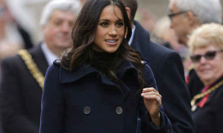 Meghan Markle's Disney+ Doc Is Out – the Elephants Deserved Better
